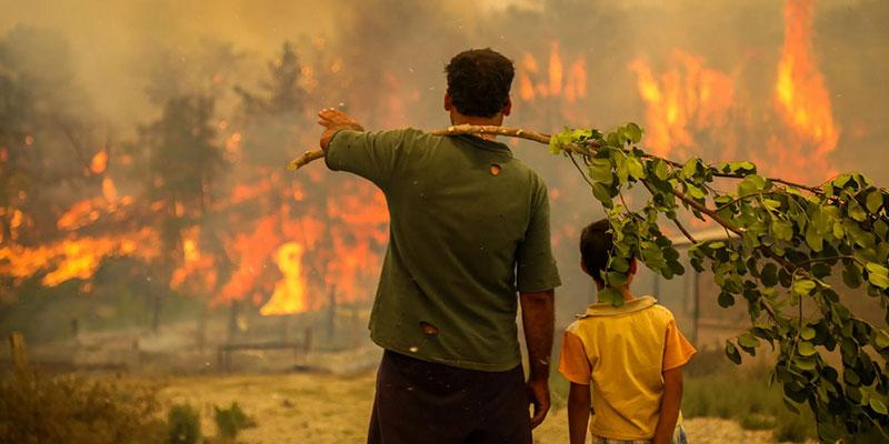 Türkiye Sigorta Birliği Yönetim Kurulu'ndan yaşanan yangın zararlarıyla ilgili kamuoyu duyurusu